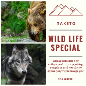 wild life special